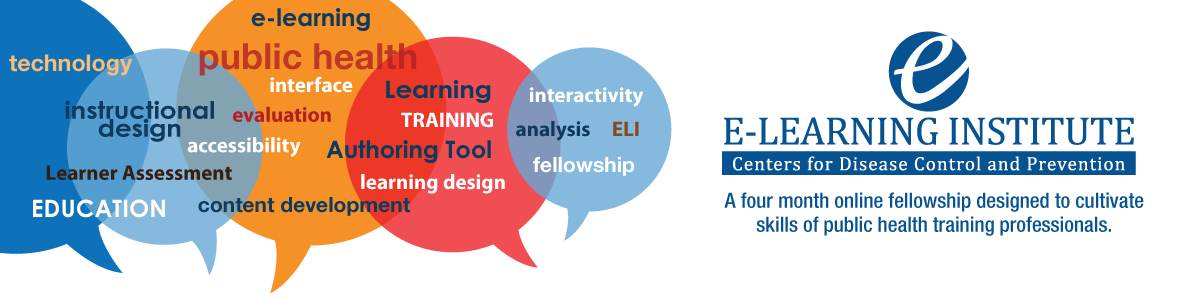 CDC E-learning Institute Fellowship